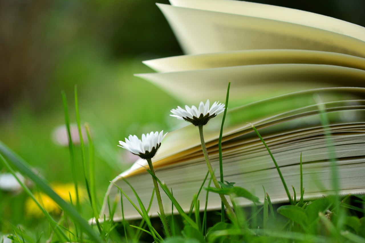 book-lying-in-grass-about-stress-and-more