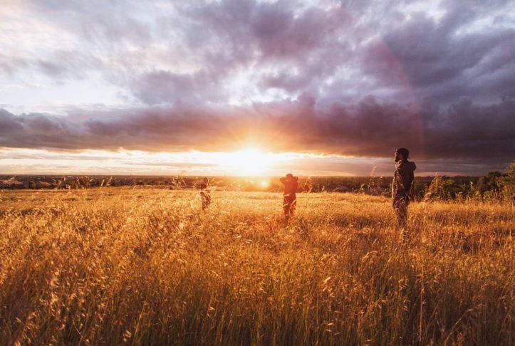 field-in-sunset