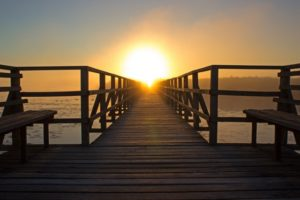 grief loss and psychotherapy for support