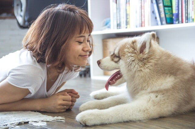 woman-sharing-feelings-with-her-dog
